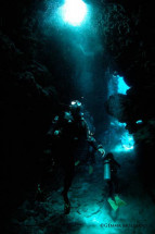 Fiji Scuba Diving -- Wall Street
