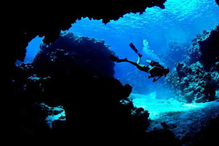 Fiji's Best Diving